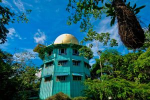 canopy-tower-gallery_10