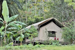 canopy-camp-gallery-8