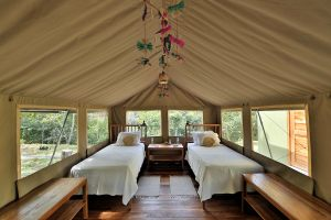 canopy-camp-gallery-10