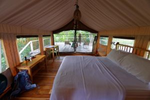 canopy-camp-gallery-13