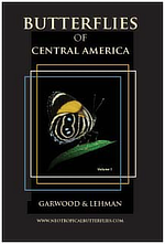 Butterflies of Central America Kim Garwood